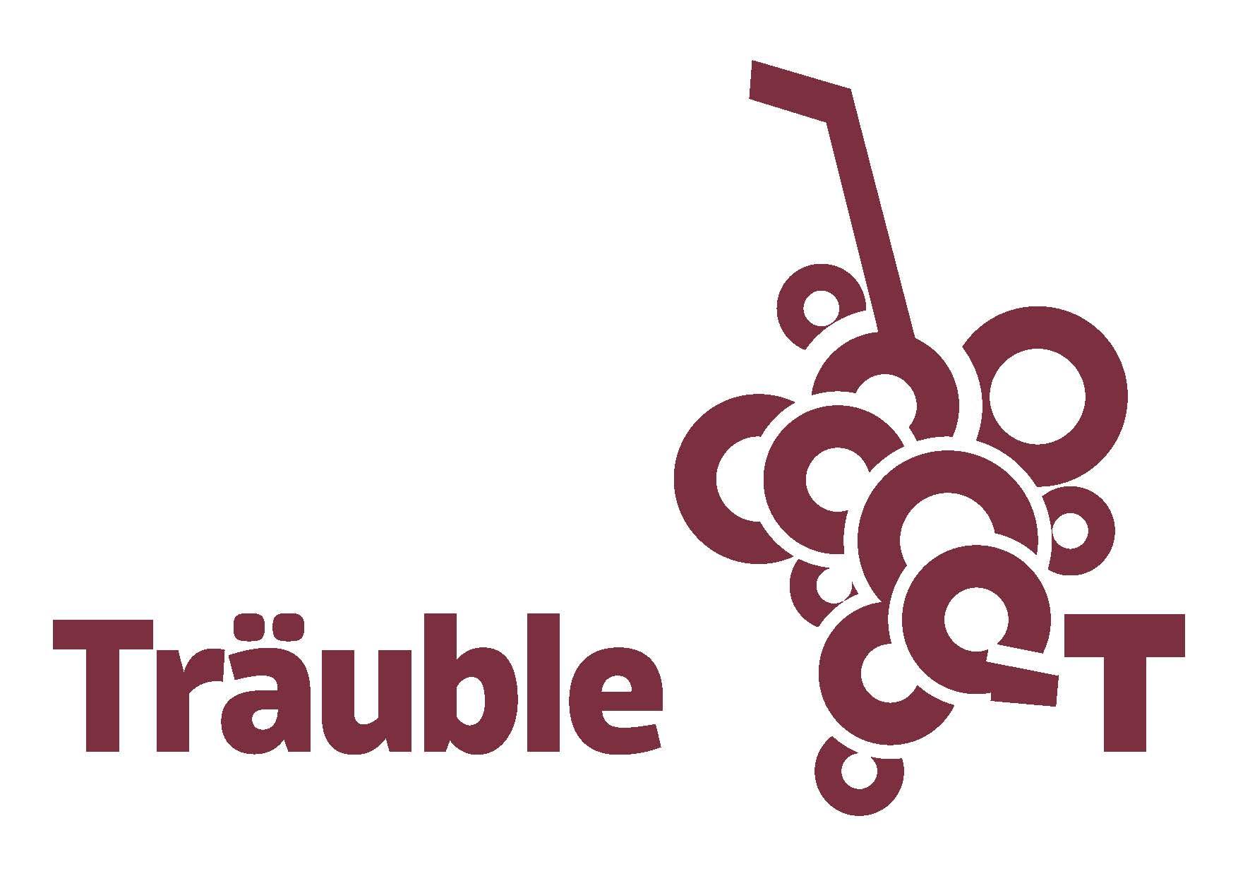 logo-mit-schriftzug